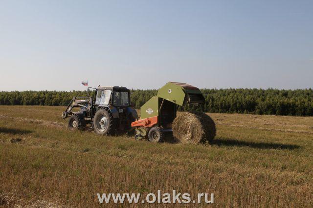 Агрофирма-Катынь. Заготовка сена.